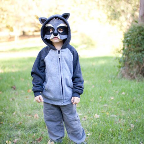 easy raccoon animal costume